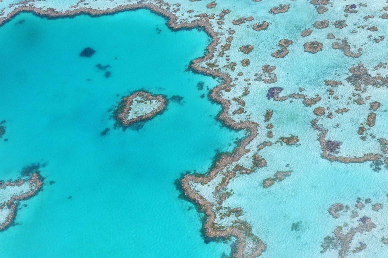 Heart Reef, Great Barrier Reef, Australien