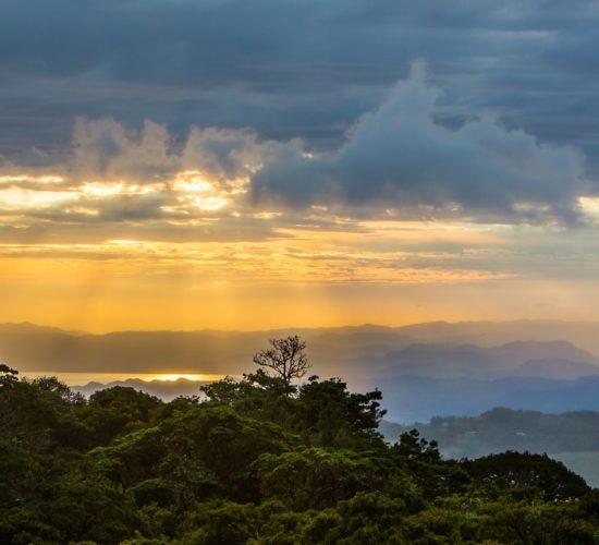 Monteverde, Costa Rica © James Ting on Unsplash