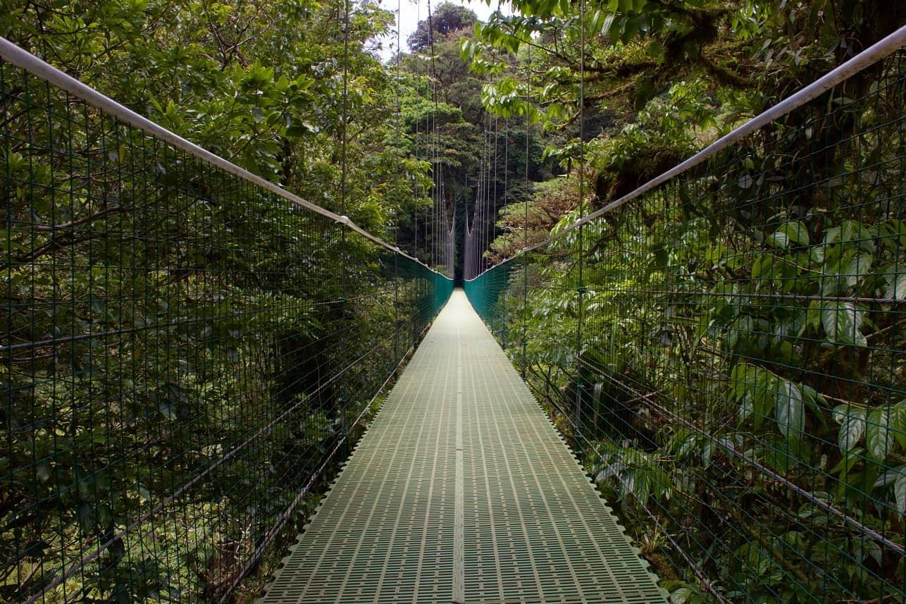 Treewalk, Selvatura, Monteverde, Costa Rica © Leslie Cross on Unsplash
