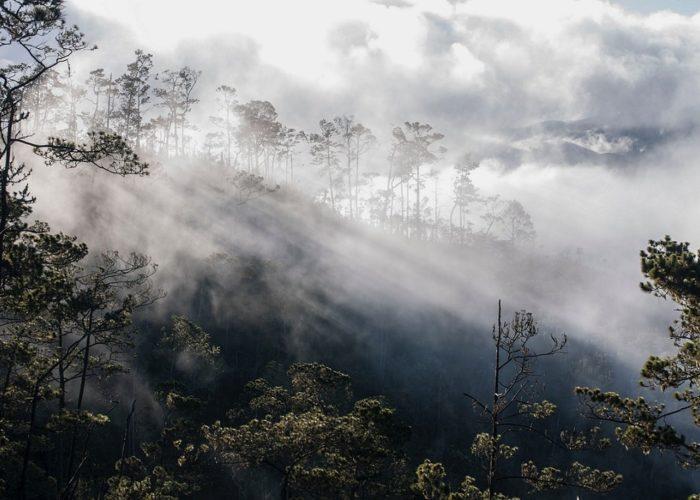 Pico Duarte, Dominikanische Republik © Juan Fernández on Unsplash