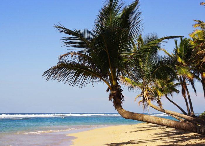 Strand, Punta Cana, Dominikanische Republik
