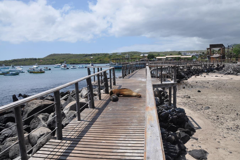 Galapagos Puerto Baquerizo Moreno, San Cristobal