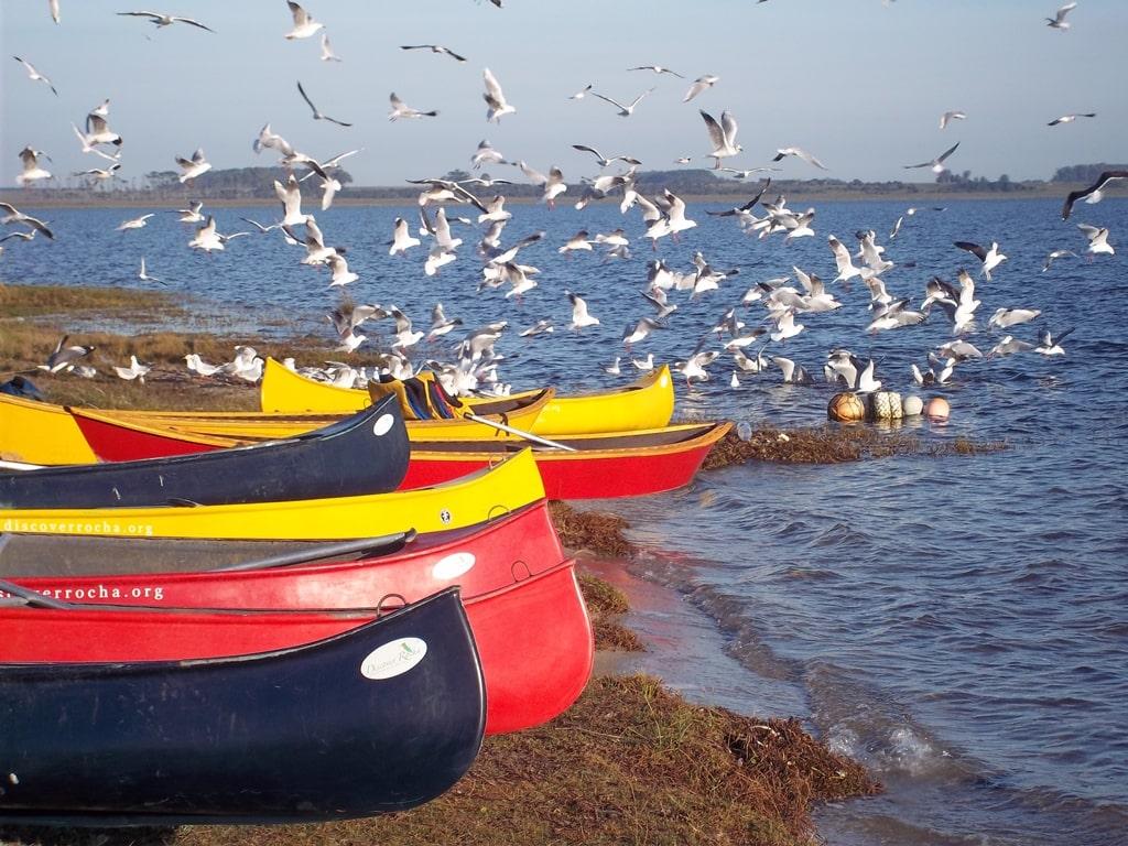 Kayaking, Uruguay © Lares