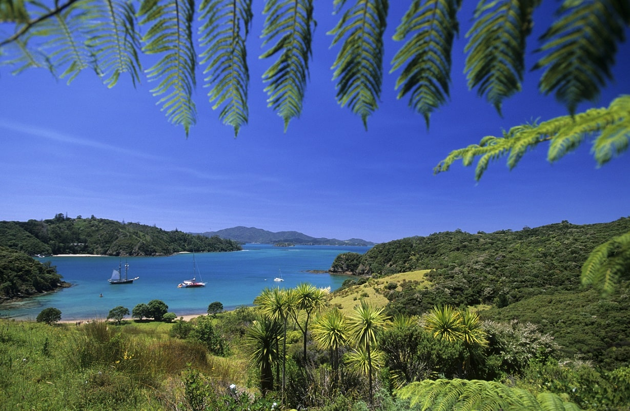 Bay of Islands © Oliver Bolch