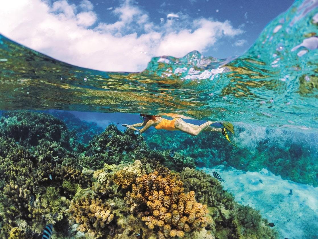 Bora Bora Snorkel © Roger Paperno