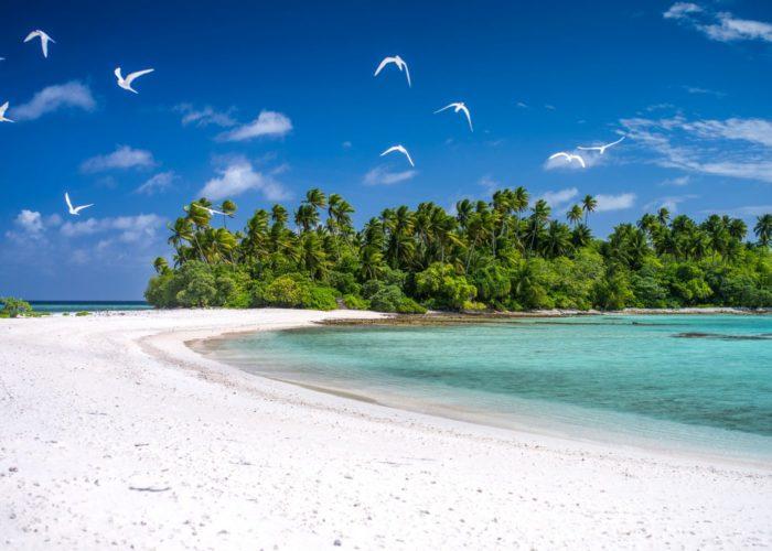 Strand, Kiribati © David Kirkland_SPTO