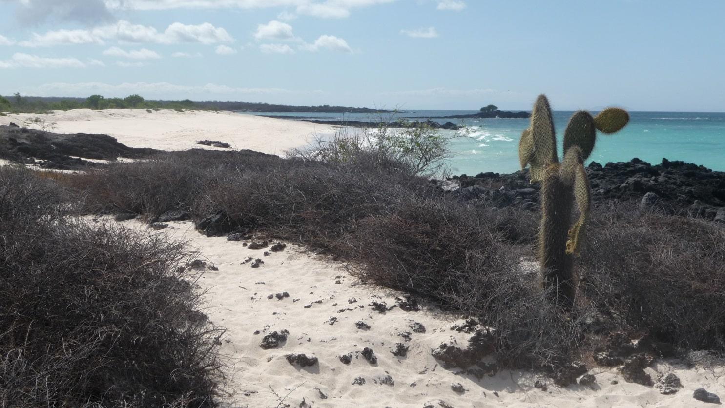 Bachas Beach, Santa Cruz